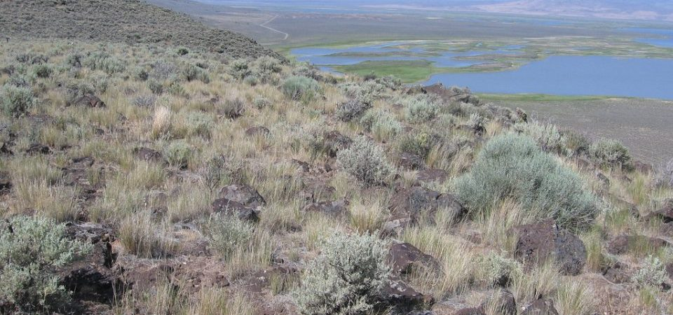 Bivouacking in Oregon's Back of Beyond